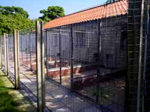 Clifftop Boarding Kennels in East-midlands near Lincoln